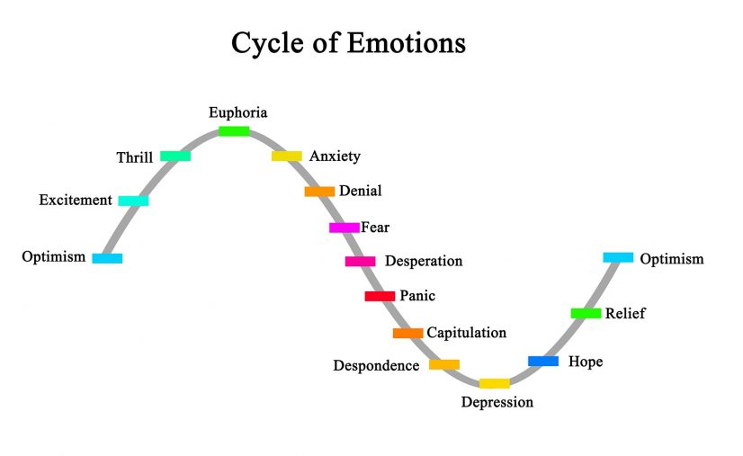 share market investment emotional cycle