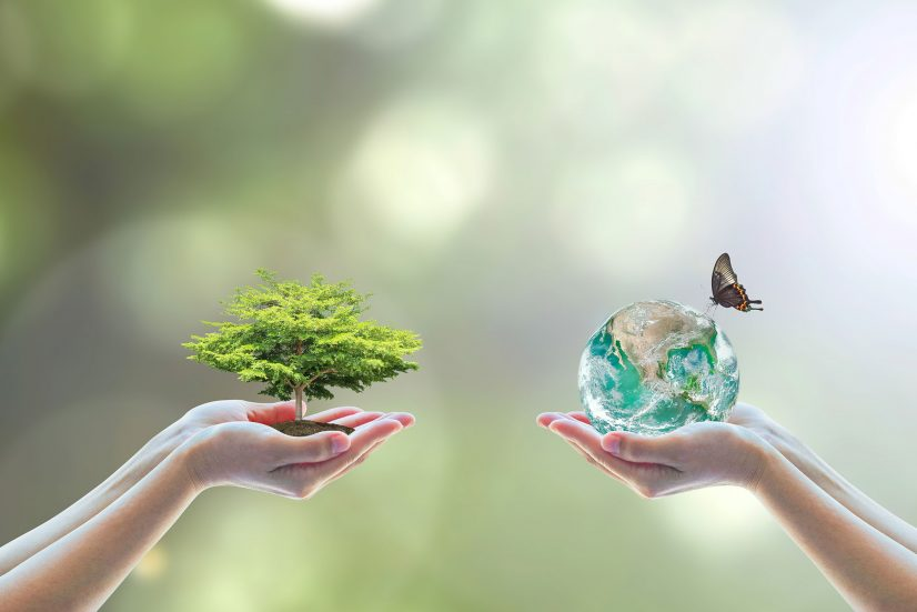 ethical and sustainable investments